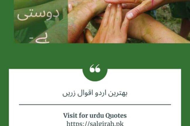 اردو کے بہترین حوالہ جات